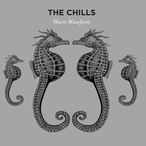 The Chills - Warm Waveform