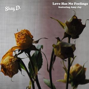 Shay D. - Love Has No Feelings