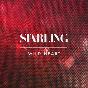Starling - Wild Heart