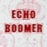Echo Boomer - Broken Bird