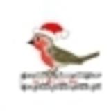 James Lazzari - I Cant Wait For Christmas