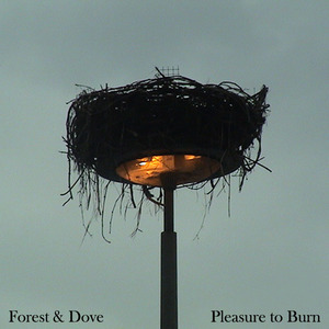 Forest and Dove - Burning Blue