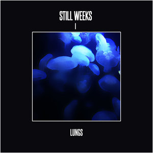Still Weeks - Lungs
