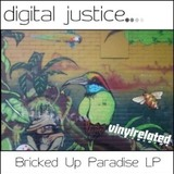 Digital Justice - All Fucked Up