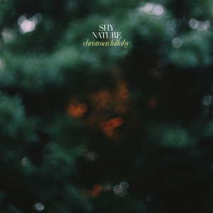Shy Nature - Christmas Lullaby
