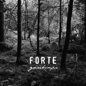 FORTE - Goosebumps