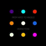 From Apes To Angels - Perfection