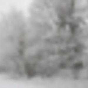 Mike Fenna - Winter