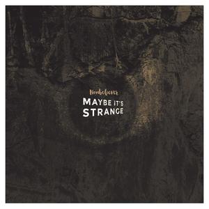 Nonbeliever - Maybe It's Strange