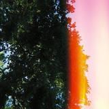 Middle Distance - Losing Colour