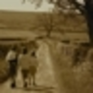 Raven - Long Road