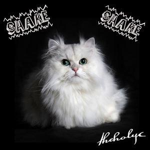 Theholyc - Shake Shake