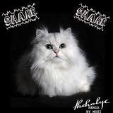 Theholyc - Shake Shake (Muzi Remix)