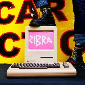 ZIBRA - Girls Like You