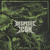 Despised Icon - The Aftermath