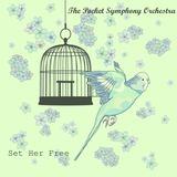 The Pocket Symphony Orchestra - Set Her Free