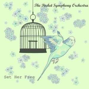 The Pocket Symphony Orchestra - Set Her Free