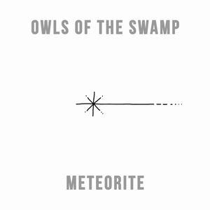 Owls of the Swamp - Meteorite