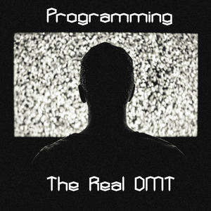 Dan Ault - Programming - The Real DMT