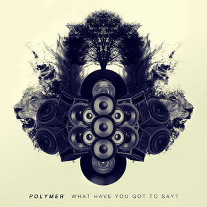 Polymer - What Have You Got To Say?