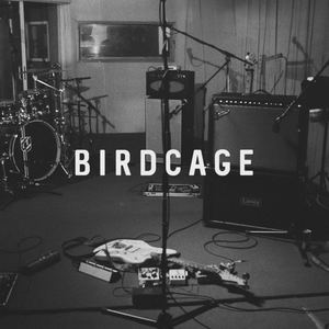 Birdcage - Paint Your Face