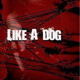 Sauza Kings - Like A Dog