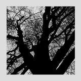 otzeki - All This Time