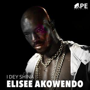 Elisee Akowundo