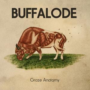 Buffalode - Discorduroy