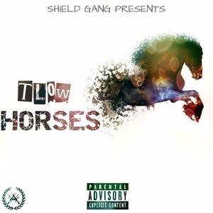 TL0w - Horses
