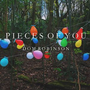 Dom Robinson - Pieces Of You