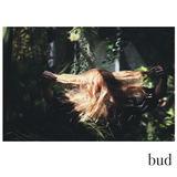Fenne Lily - Bud