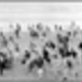 Seaside Riot - Int Sky TV Brilliant