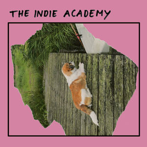 Canshaker Pi - Indie Academy