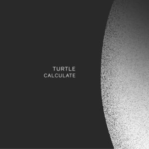 Turtle  - Calculate