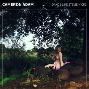 Cameron Adam - Dance Like Stevie Nicks