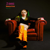 Zonic - Take Me Back