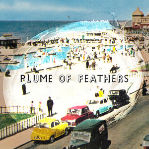 Plume Of Feathers - Rhyl Love