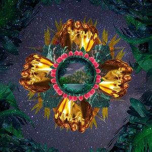 Rina Mushonga - Jungles