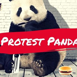 Protest Panda - Protest Singer