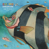 Cosmo Sheldrake - Mind of Rocks (ft Bunty)