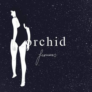 Orchid - Jasmines
