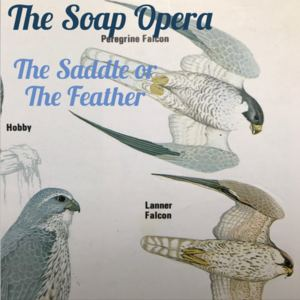 The Soap Opera - The Saddle or The Feather