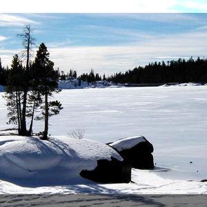 Gilbert - Snow snow snow snow snow