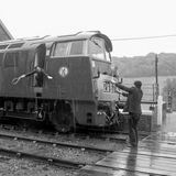 U426 - VT101