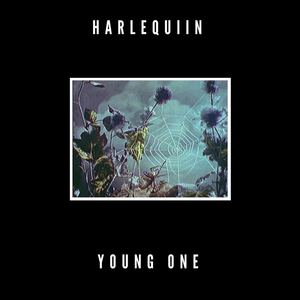 Harlequiin