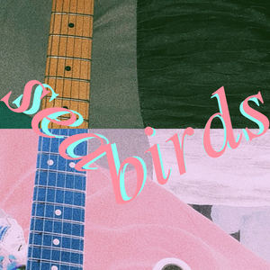 Pizzagirl - Seabirds