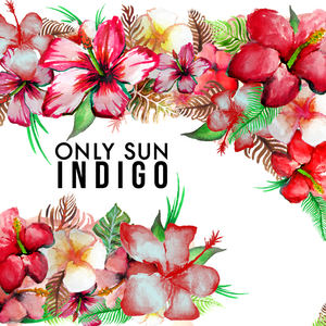 Only Sun - Indigo - Radio Edit
