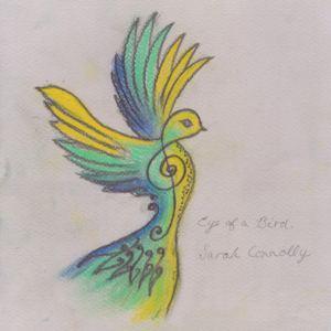 Sarah Connollly - Eye Of A Bird