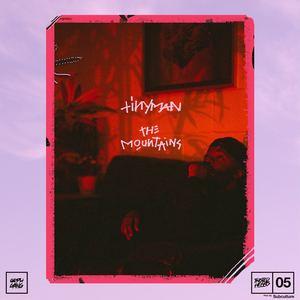 TINYMAN - The Mountains